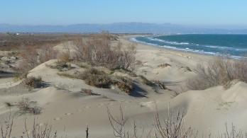 Abans de la creació del parc natural l'any 1983, el Delta de l'Ebre era desconegut per a la majoria dels catalans